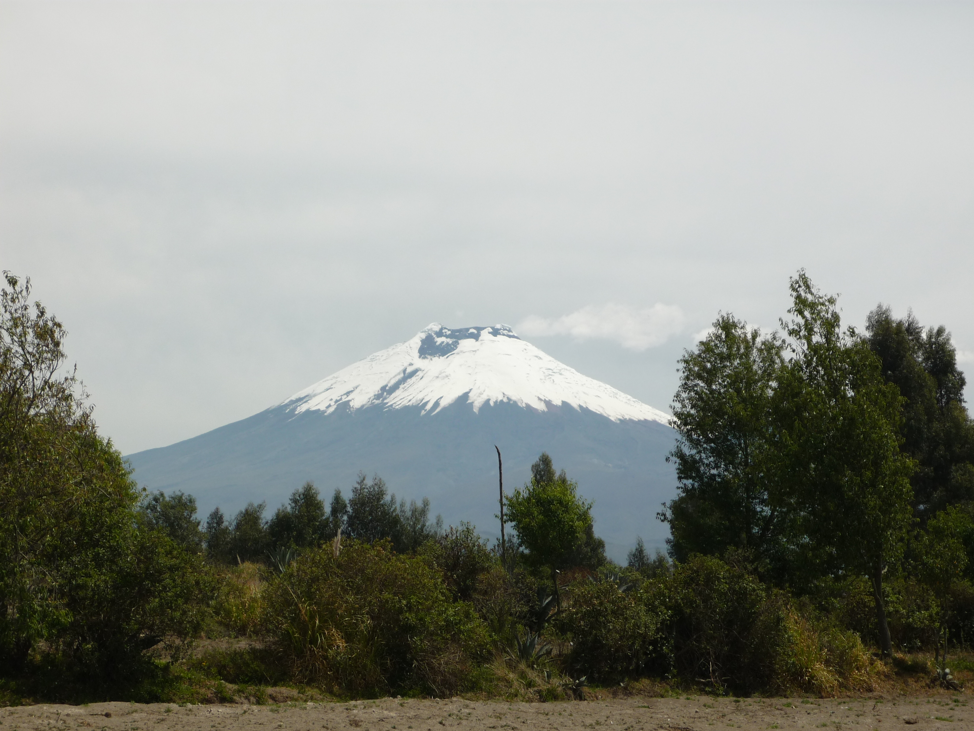 Travel In Ecuador  U2013 Futuro Valdivia